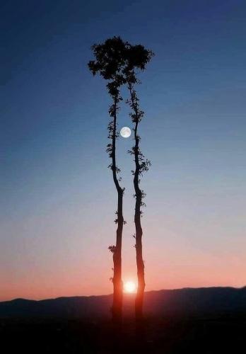 soleil  lune.jpg